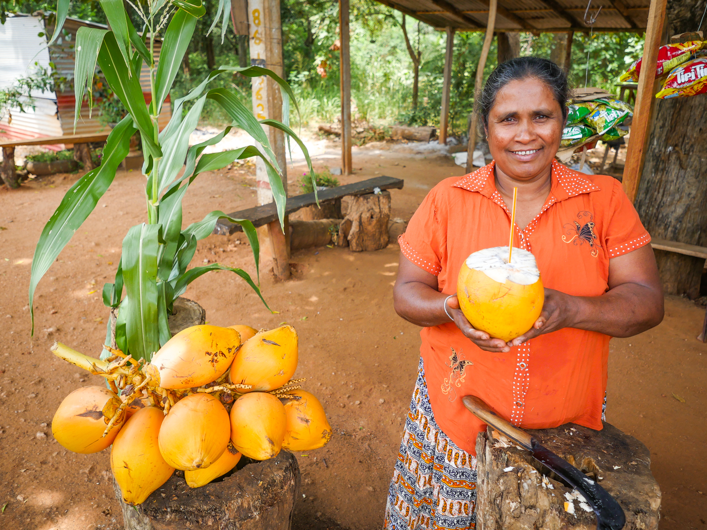 Quenching Thirst With The Sri Lankan King Coconut Thembili
